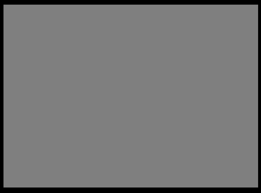 fannyco-logo-original-rectangular-gris